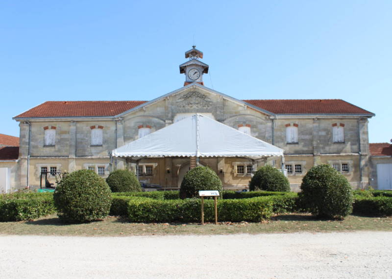 Chateau Loudenne (4)